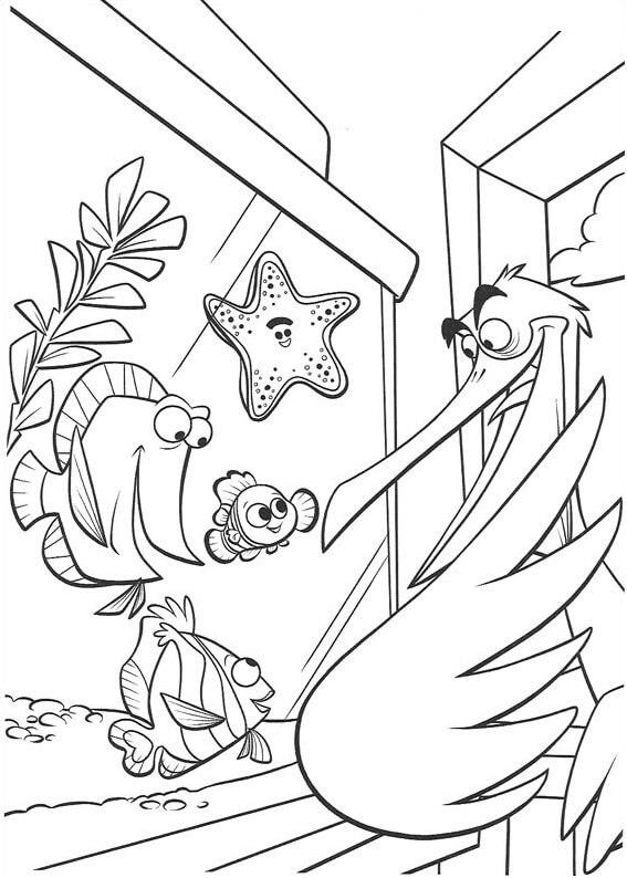 Desenhos de Nigel Em Busca De Nemo para colorir