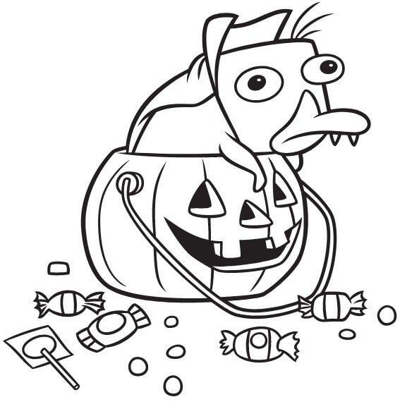 Desenhos de Perry Em Abóbora para colorir