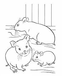 Desenhos de Três hamsters para colorir