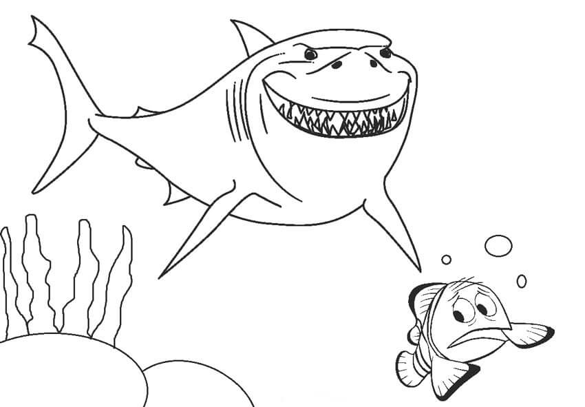 Desenhos de Tubarão E Nemo para colorir